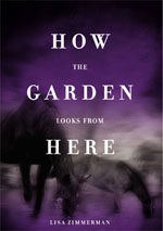 How the Garden Looks from Here - Lisa Zimmerman